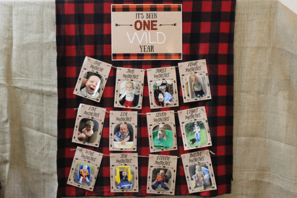 One Wild Year Photo Birthday Banner