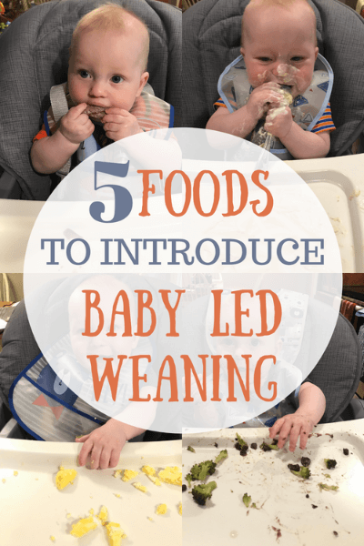 5 foods you can use to introduce to your baby on his or her baby led weaning journey